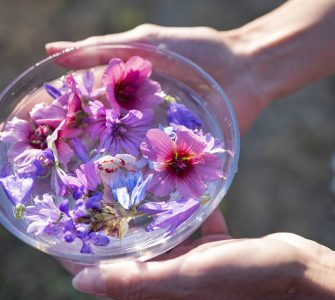 plant tinctures with flower for alternative medicine