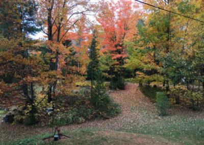 fall-at-Sunny-Rock