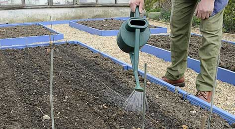 Enriched soil being watered