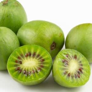 Hardy Kiwi Vine - Issai