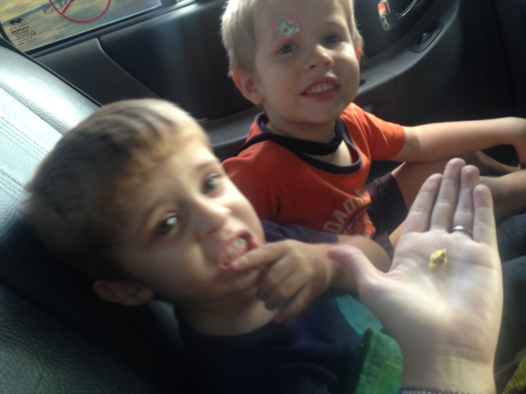 D-man and W-man got a special treat from our cab driver that day. An apple! They loved it so much they left the tiny stem and consumed everything else!