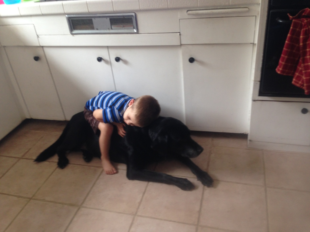 D-man resting with Bodie