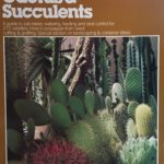 World of Cactus and Succulents, The