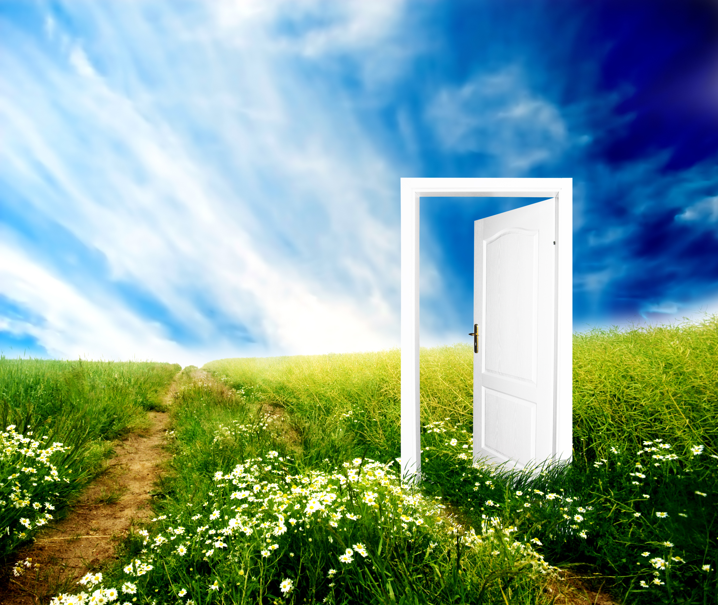 Clearing the Air: Purification vs. Filtration