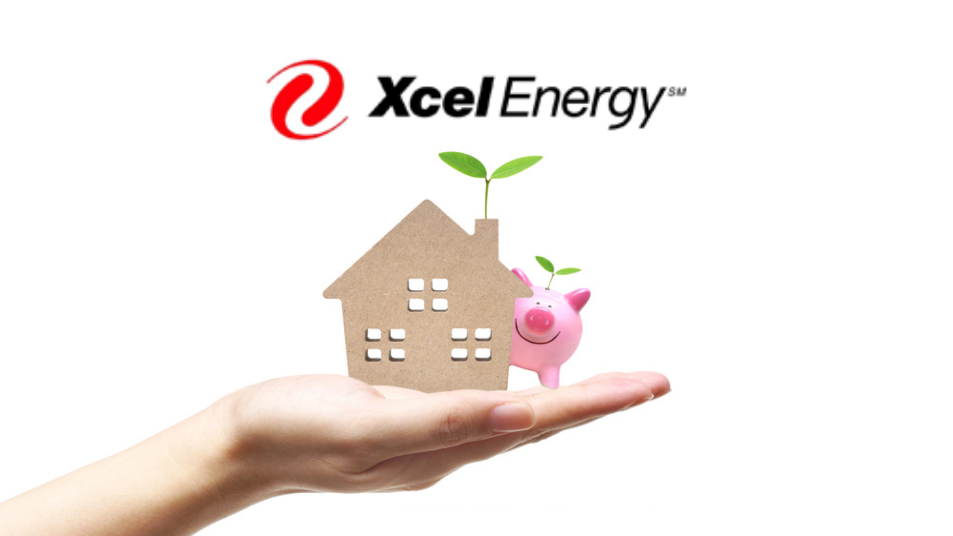 Xcel Energy Names Us 2020's Top 5 Rebate Producer