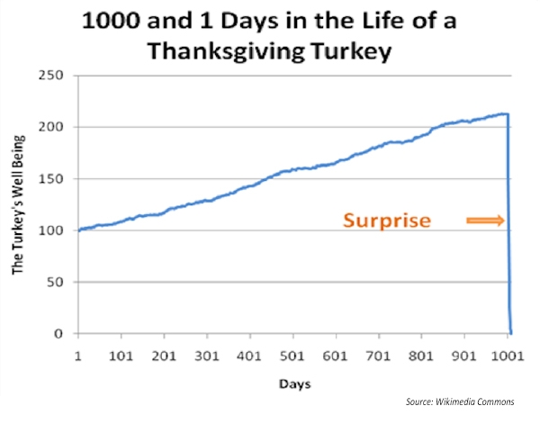 Life of a Thanksgiving Turkey