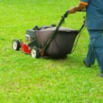 Weekly Mowing, Edging and Trimming | Landscaping & Hardscaping