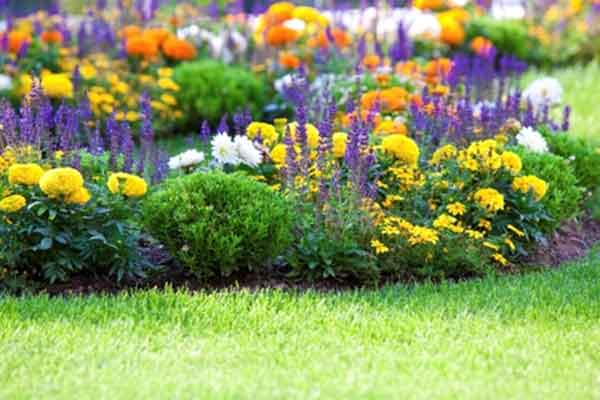 Flower Bed Maintenance | Landscaping & Hardscaping