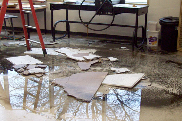Water Damage   Fire/Flood Damage Cleaning
