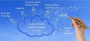 custom software development benefits