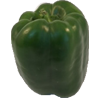 green pepper 100x100