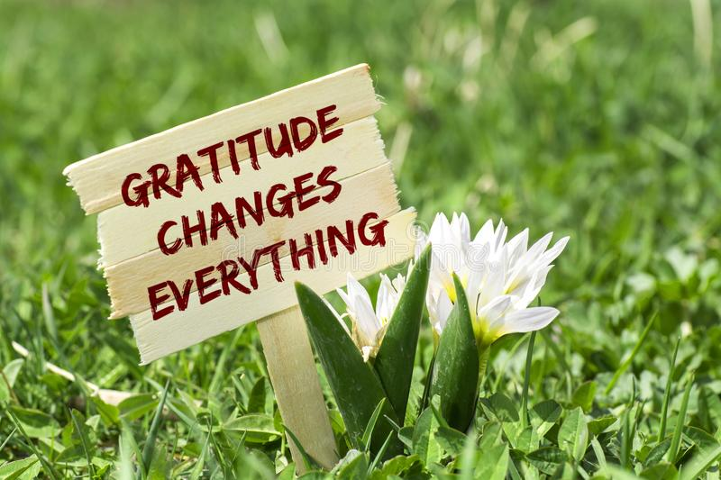 Gratitude for the New Year