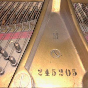 Steinway M245205