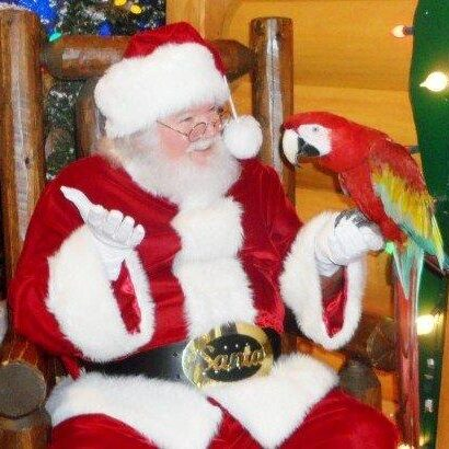 A real beard Santa for hire with a pet bird