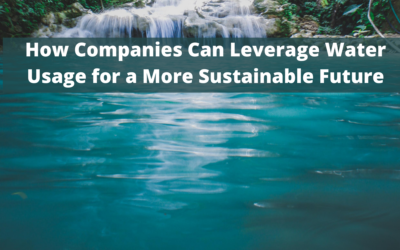 How Companies Can Leverage Water Usage for a More Sustainable Future