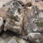 Moss Rock Boulder