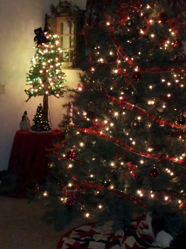 What is the Magic of Christmas?