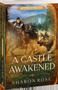 A Castle Awakened - novel 1