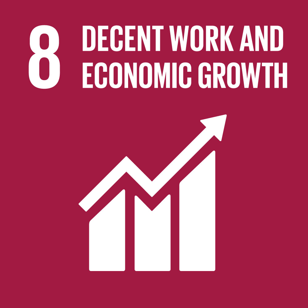 SDG8 Decent Work and Economic Growth