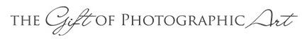 Houston Portrait Photographer