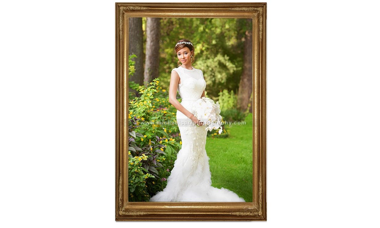 Modern Formal Bridal Photography