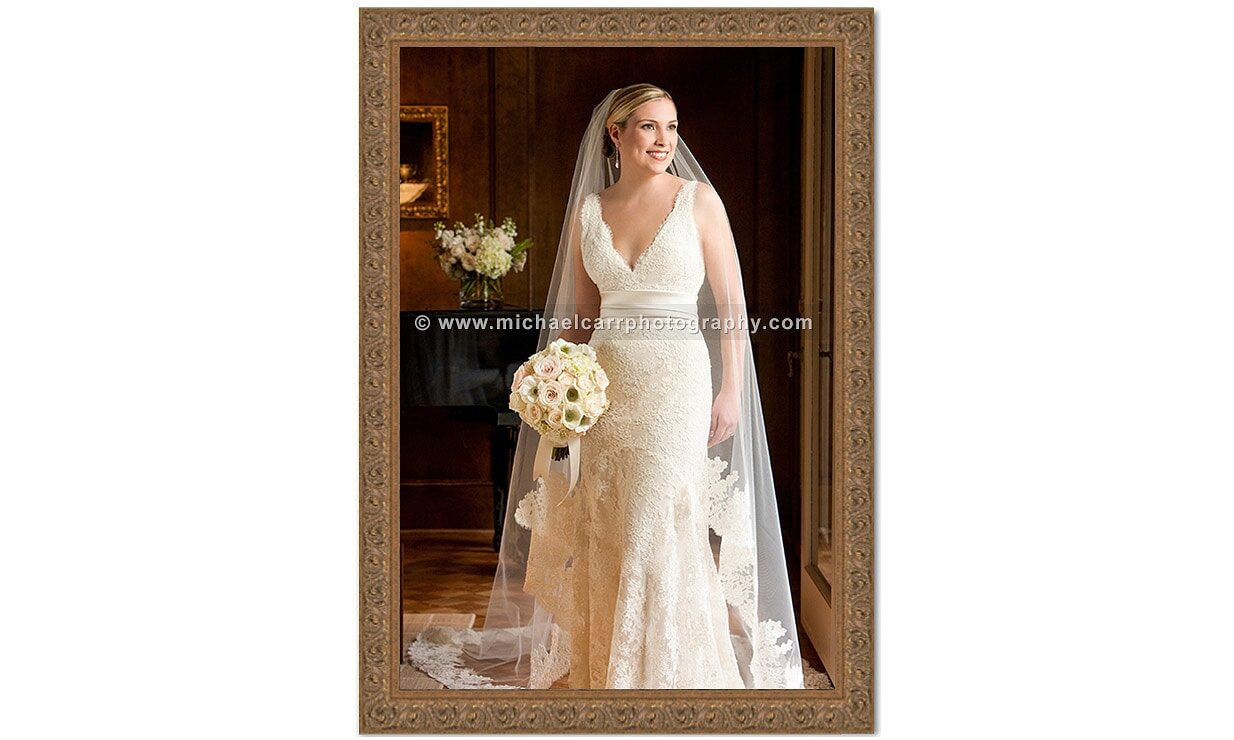Professional Bridal Portraits in Houston