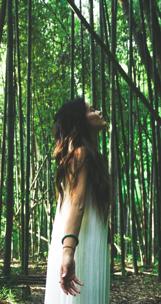 Lena-Franklin-LCSW-Mindfulness-Based-Psychotherapist-Mindfulness-Based-Psychotherapist-International-Spiritual Teacher-&-Speaker-Lena-Franklin-eating-with-erica-food-blogger-erica-key