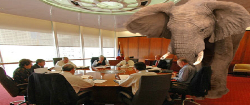 Beating the Elephant in the Room & Winning with the Hospital Value Analysis Committee!