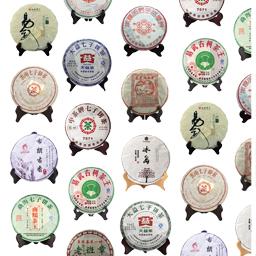 Puer Tea 普洱茶餅