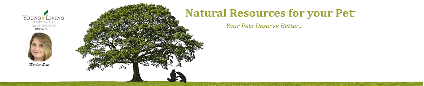 Natural Resources for Your Pet