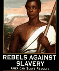 rebels-against-slavery-american-slave-revolts