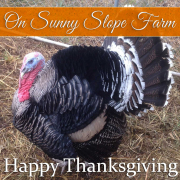 Happy-Thanksgiving-from-On-Sunny-Slope-Farm