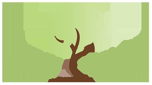 On Sunny Slope Farm