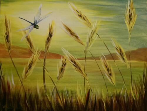 Dragonfly Fields