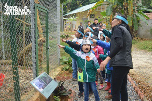 Children from Cuc Phuong Primary School learning about Binturongs with Save Vietnam's Wildlife's Lan Thi Kim Ho. - Photo: Save Vietnam's Wildlife