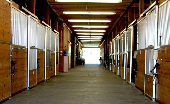 Stalls at Autumn Road Farm