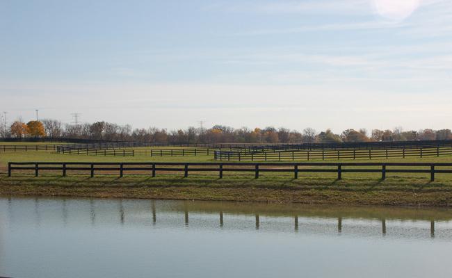 Grass Pastures at Autumn Road Farm
