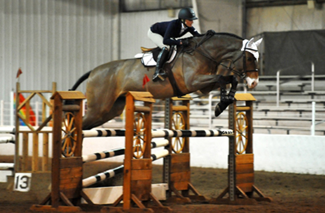 Got Milk | Ridden by Ali Cibon, owned by Gabrielle Timm