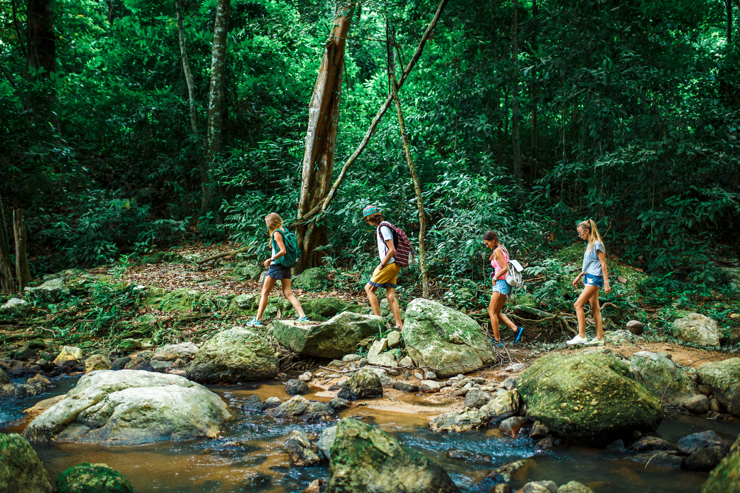 group of tourists hiking through deep jungle in thailand beside rocky stream