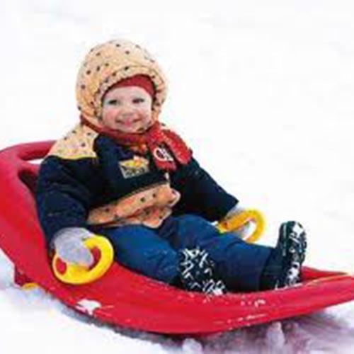 Toddler sled for rent