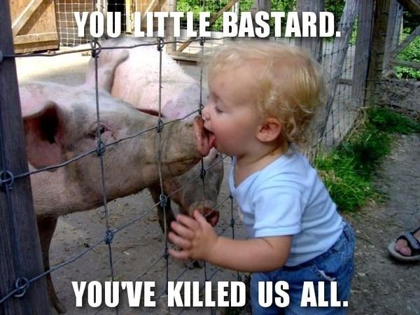 swine kiss