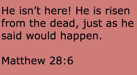 Scripture Memorization, Week 17