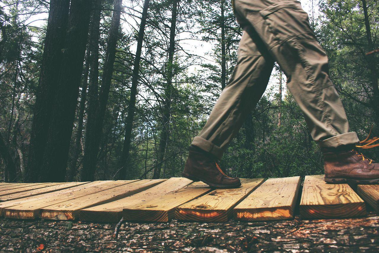 McLeod Park Nature Trail Kiln Mississippi