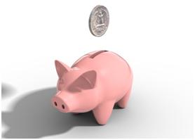 Coins in a piggy bank