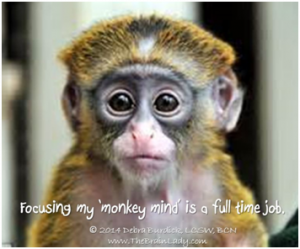 "Focusing my ""monkey mind"" is a full time job"