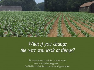 What if you change the way you look at things -tobacco snip