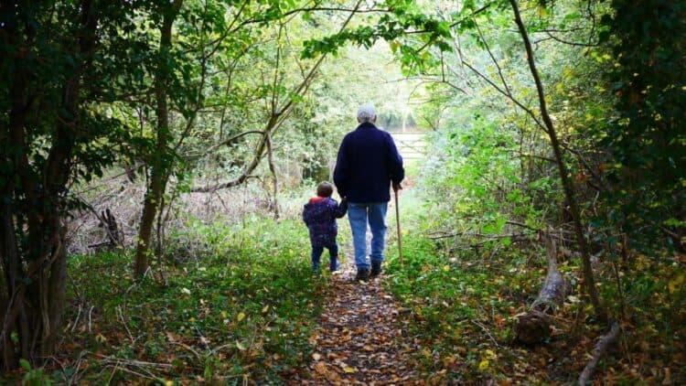 Aging in Maine Elder Law
