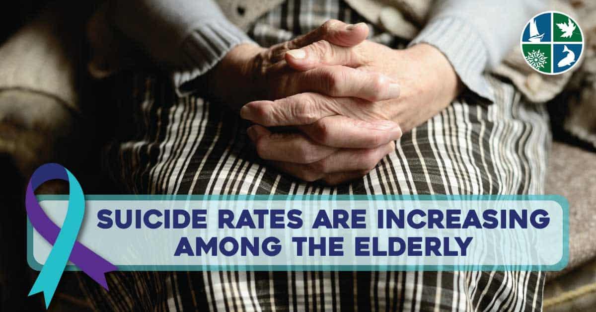 suicide rates seniors