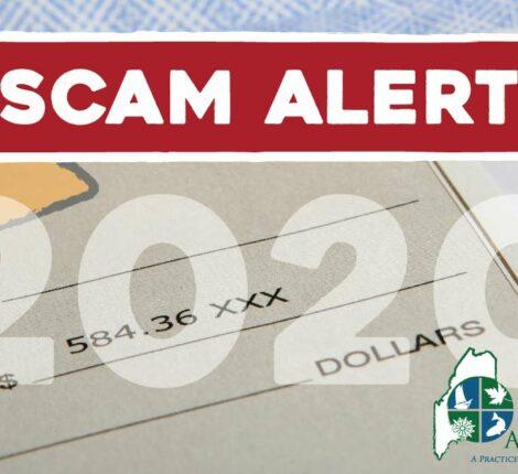 scam 2020