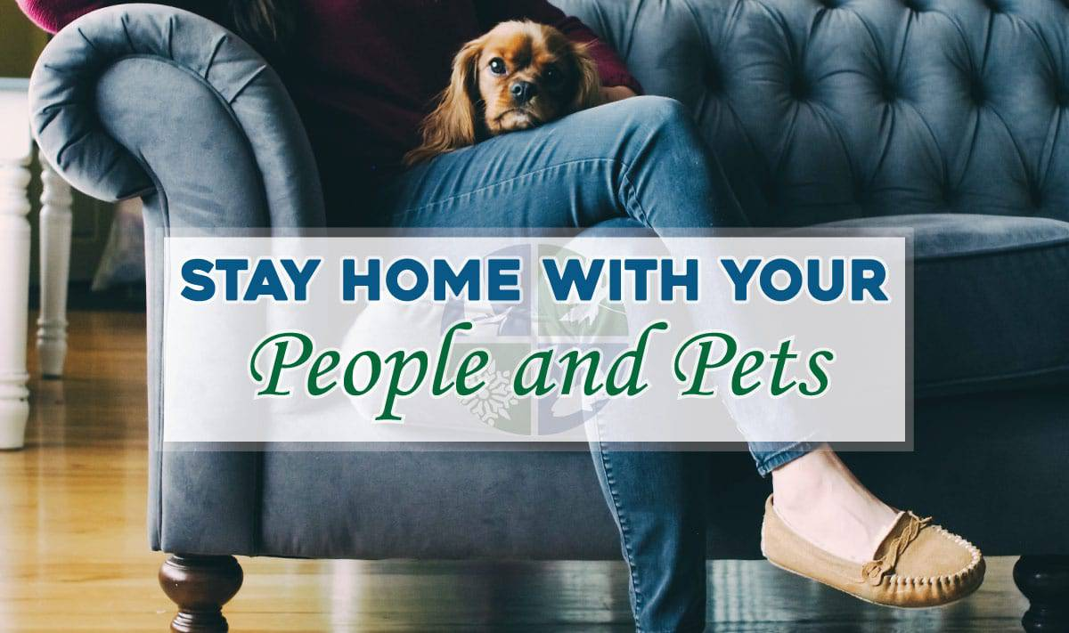 stay home estate planning
